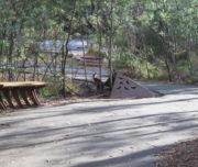 Tidbinbilla Tour - Sanctuary Entrance